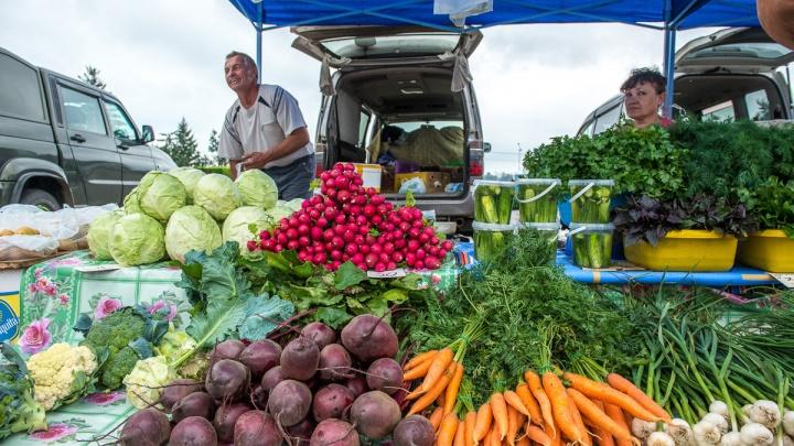 Фермеры и предприниматели Поморья смогут бесплатно поучаствовать в Маргаритинской ярмарке
