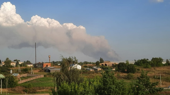 Дым виден за 30 километров. На тушение пожара под Саровом брошены Росгвардия, поезда и авиация