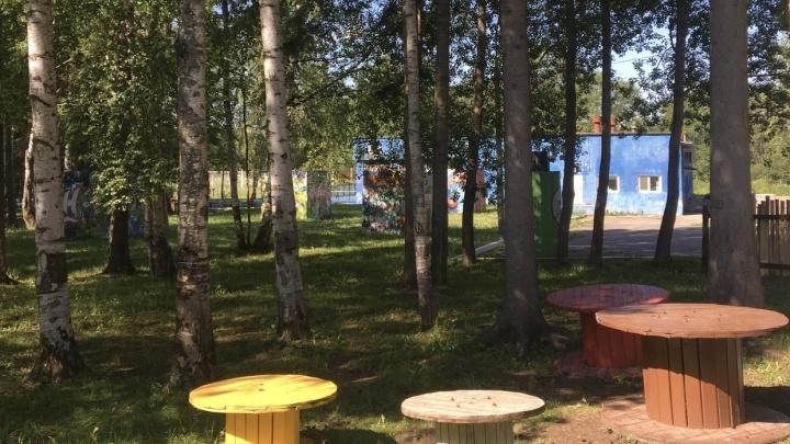 Территорию детских лагерей в Прикамье будут обрабатывать от клещей перед открытием и между сменами