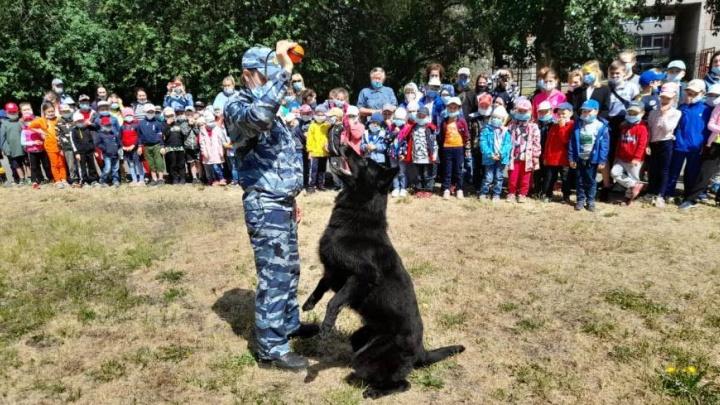 Полицейские собаки устроили шоу для школьников Екатеринбурга