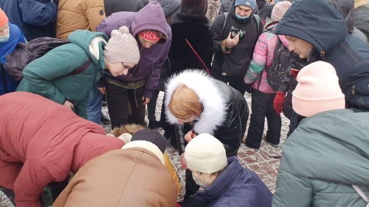 Головой о бордюр: в Ярославле в момент столкновений протестующих с ОМОНом пострадала женщина