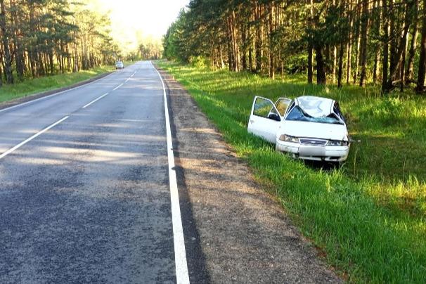 Два человека пострадали при столкновении машины с лосем в Ярославской области