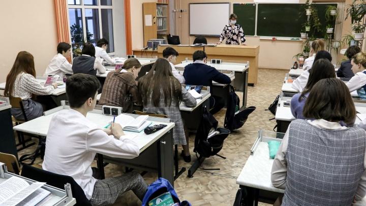 Как будут учиться нижегородские школьники в этом году. Главное