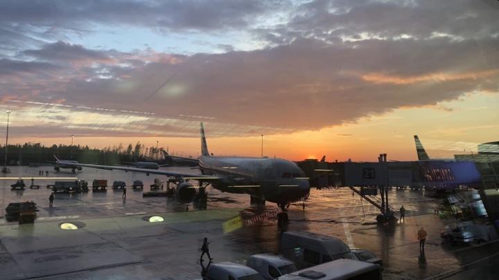 Из аэропорта Краснодара до курортов можно будет доехать напрямых автобусах