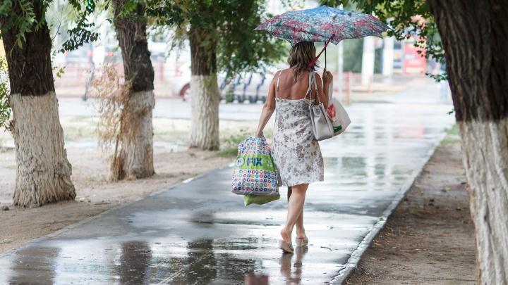 Прощальный подарок лета: какими будут последние выходные августа в Волгограде и области
