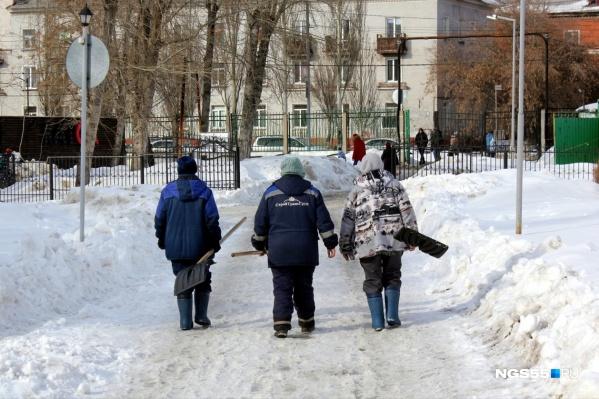 Для каждой шестой вакансии в Омской области квалификация не требуется