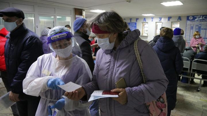 Не ковидом единым: с какими еще инфекциями омичи боролись в 2020году