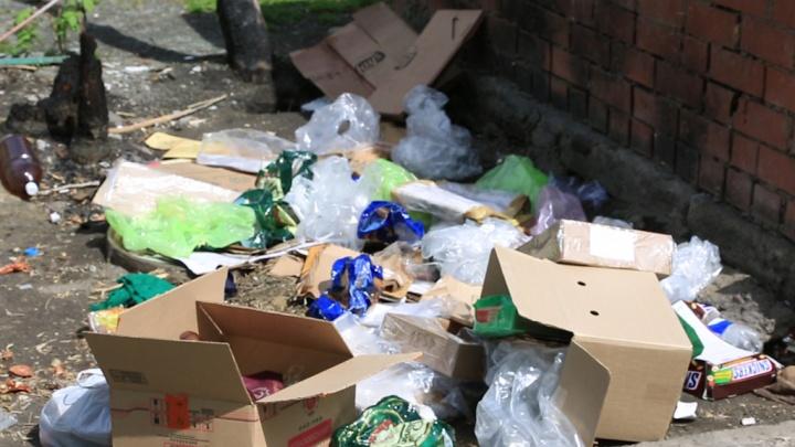 Три улицы Красноармейского района Волгограда скрылись под слоем новогоднего мусора