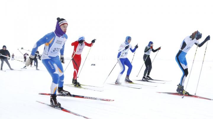 Как подать заявку на «Лыжню России» в Архангельске. Допустят не всех