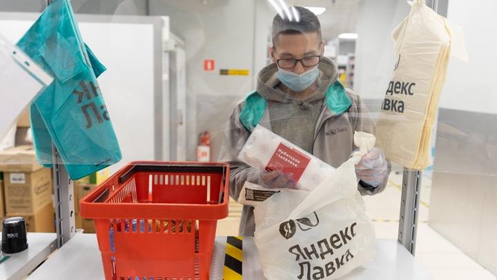 «Яндекс» запустил в Екатеринбурге сервис доставки продуктов. Изнанка бизнеса