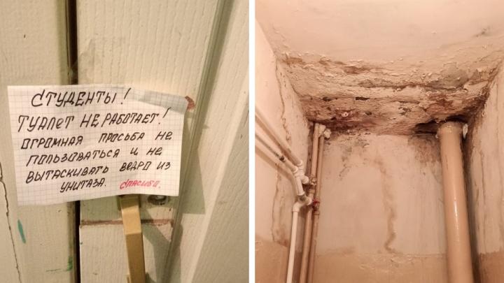Туалет не работает, в душе — грибок: депутат показал состояние общежития техникума в Северодвинске