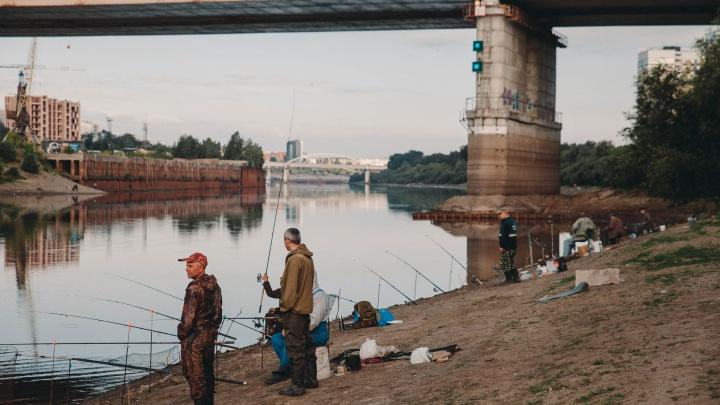 Как в Стамбуле! Тюменцы освоили рыбное место у набережной — сюда приходят с вечера и ночуют под мостом