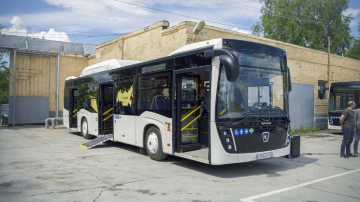 За лизинг 150 новых автобусов для Новосибирска заплатят почти 2,5 млрд рублей