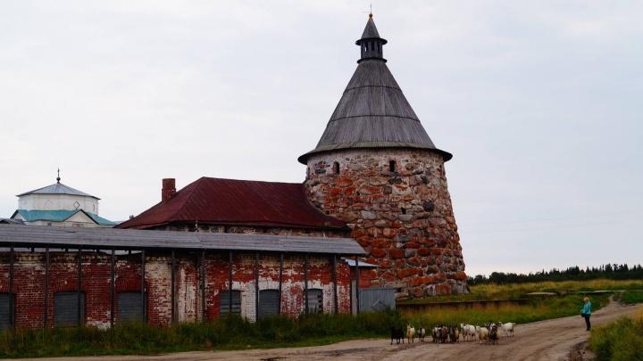 На Соловках снимут ограничения из-за COVID-19. Туда снова пустят туристов и паломников