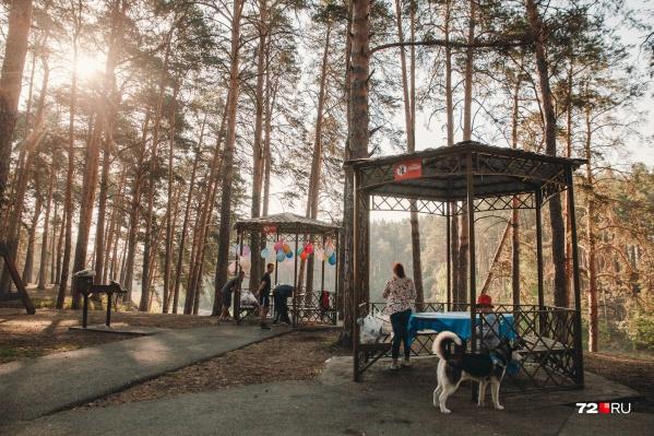 Многие тюменцы, которые любят проводить время в Гилевке, знают, что выбираться в лесопарк нужно пораньше. Особенно если вы хотите посидеть в беседке и занять мангал