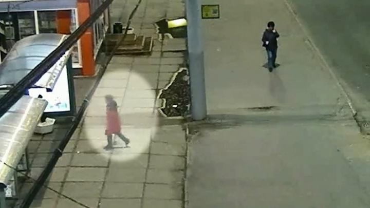 В Архангельске оштрафовали женщину, укравшую саженцы с «зеленой» остановки в центре города