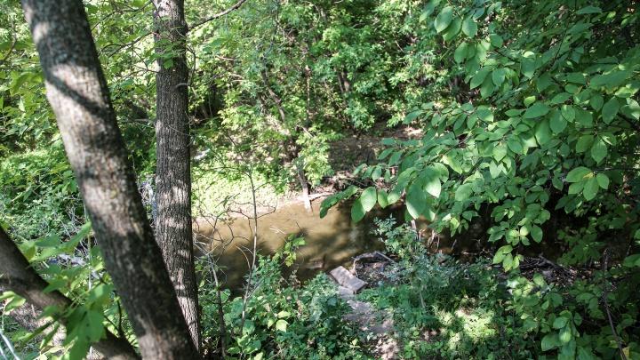 «Шугуровка не может быть чистой»: эколог — о реке, с которой началась фенольная катастрофа в Уфе в 90-х