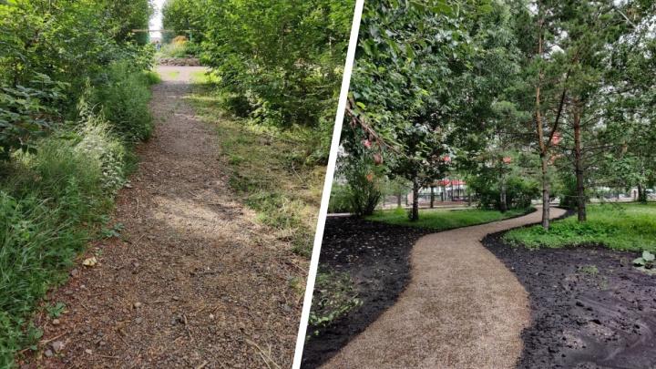 «Тропинки — это большая проблема»: красноярский урбанист рассказал, как решить проблему пыли и грязи в городе