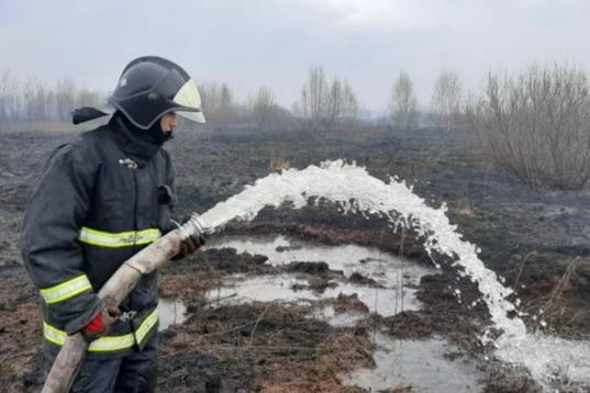 «Нам тоже тяжело дышать». Пожарный ответил на гневные вопросы о тушении торфяников в Солнечном