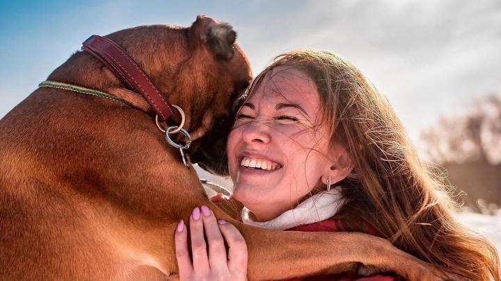 Слепой ротвейлер и чихуа-хуа, которую бил хозяин: в Екатеринбурге провели фотосессию для собак
