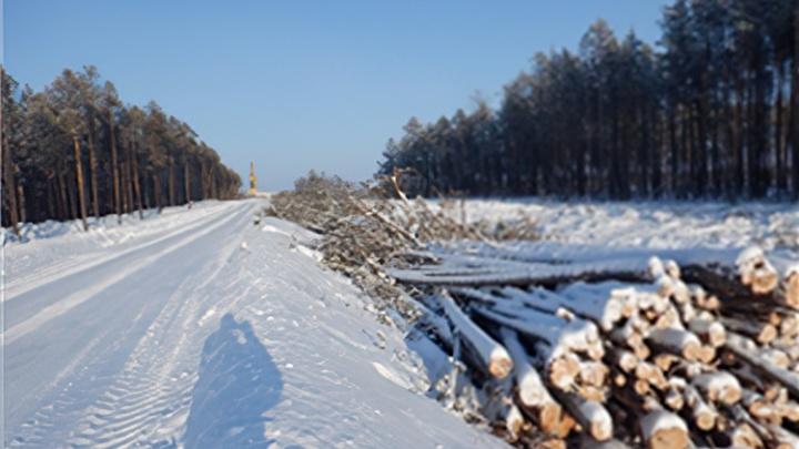 Предприятие «Роснефти» проигнорировало 60% предписаний Природнадзора. Штраф не превысит 60 тысяч
