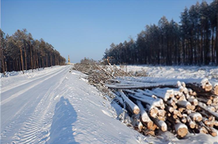 Предприятие «Роснефти» проигнорировало 60% предписаний Природнадзора. Штраф не превысит 60тысяч