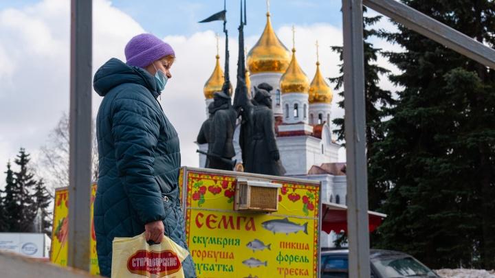 Зелень вместо «поля асфальта»: в Архангельске показали, как могут преобразить площадь Профсоюзов