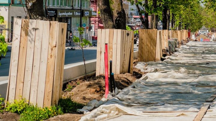 На Тихом Компросе 44 старых дерева заменят саженцами-крупномерами