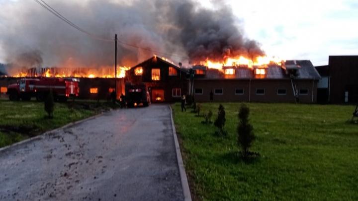 В Нижегородской области полностью сгорела большая конюшня. В нее попала молния
