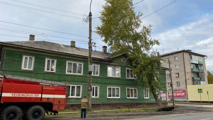 В Соломбале на крышу дома из-за сильного ветра упало дерево