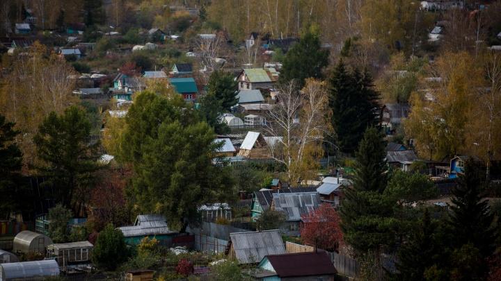 «В деревне скот колют, потому что кормить не на что»: в Новосибирске в два раза подскочили цены на удобрения