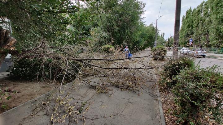 Спасайся, кто может: на Волгоградскую область надвигается страшный ураган