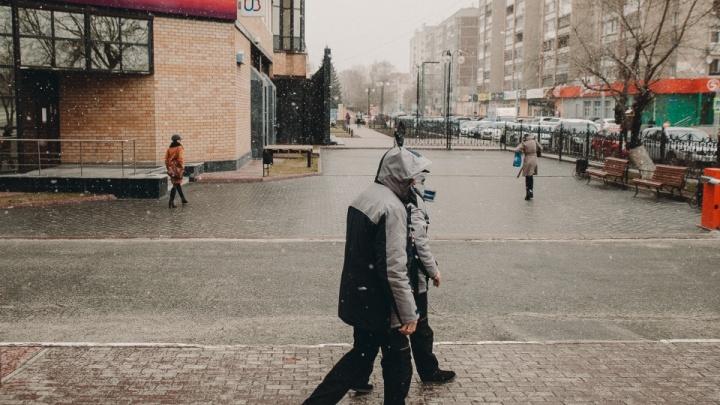 МЧС предупреждает тюменцев о сильном ветре соснегом идождем