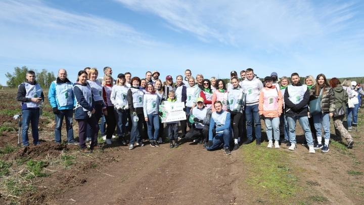 Сбер в Красноярске подержал акцию «Сад памяти»