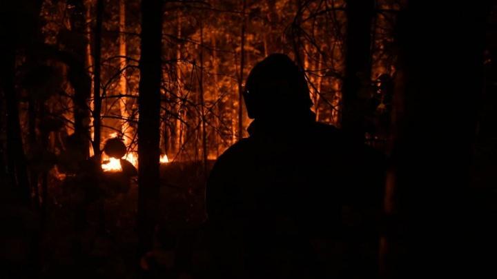 Природный пожар на Волчихе тушат спасатели. Онлайн о крупном возгорании у Пермского тракта