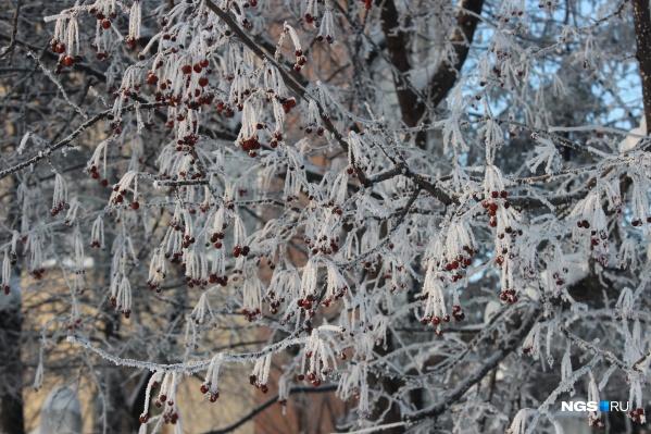 С Нового года в Новосибирске стоят аномальные морозы
