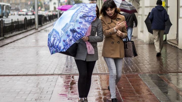 На Новосибирск идут дожди: прогноз погоды на неделю
