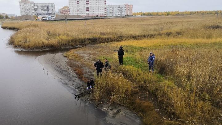 В Северодвинске нашли труп мужчины. На месте работает следком