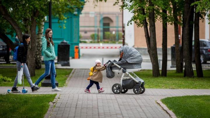 Каждый пятый ребенок в Новосибирской области рождается вне брака