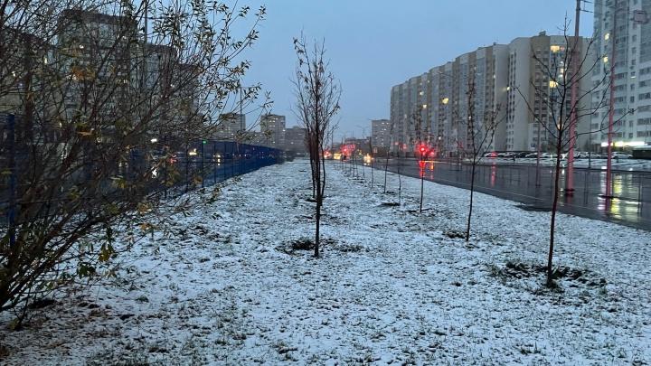 В Тюмени выпал первый снег. Смотрим, как выглядит город