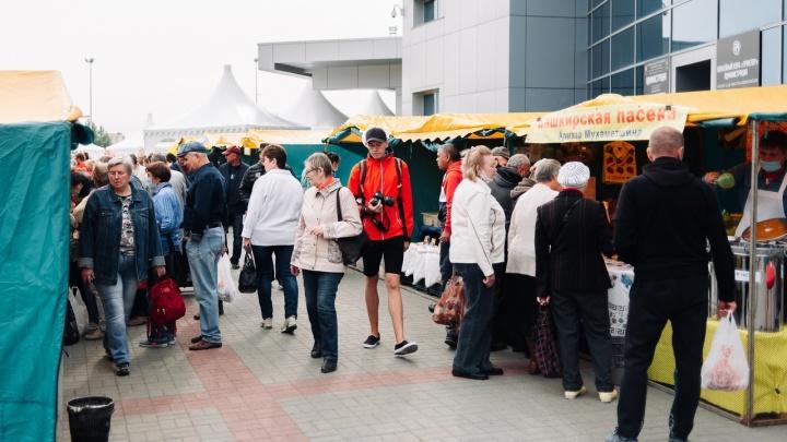 В Челябинске открылась традиционная ярмарка у «Теоремы»