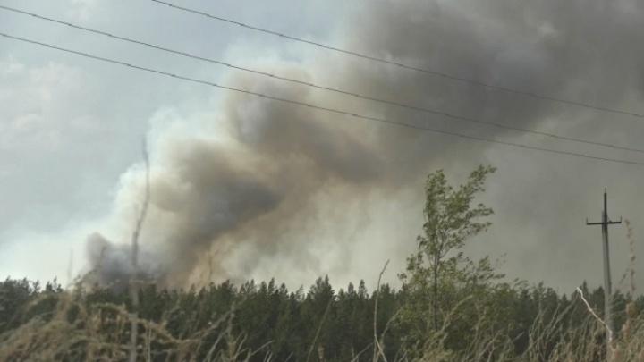 В региональном МЧС уточнили площадь природного пожара в Бузулукском бору