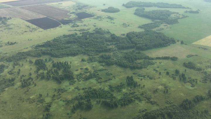 Власти Зауралья потратят миллионы рублей на противопожарные авиапатрули лесов