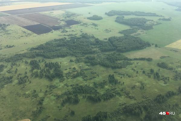 Для мониторинга лесных пожаров в Зауралье будут использовать авиационный и наземный контроль, а также камеры на сотовых вышках