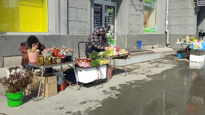 Весна пришла: в Новосибирске на улицах начали продавать черемшу