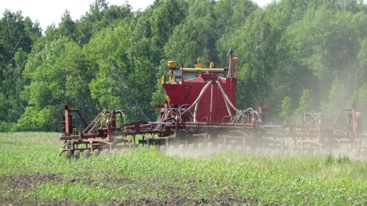 Засевают около 70 тысяч гектаров в сутки: новосибирские аграрии получили новую технику для посевной