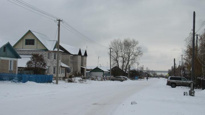 Жителям Зауралья предлагают до 100тысяч рублей на развитие подсобного хозяйства