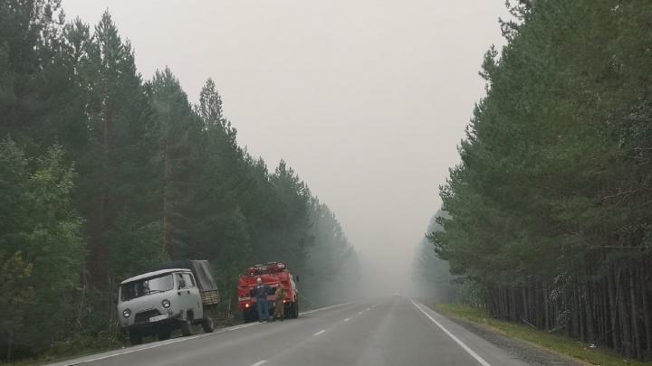 Трассу под Тюменью заволокло густым дымом — снова горит торф