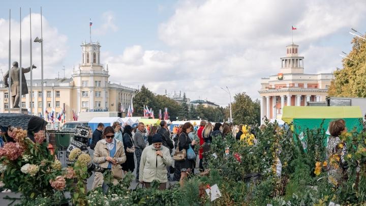 Кемеровчане предложили проводить ярмарки на Московской площади: ответ властей