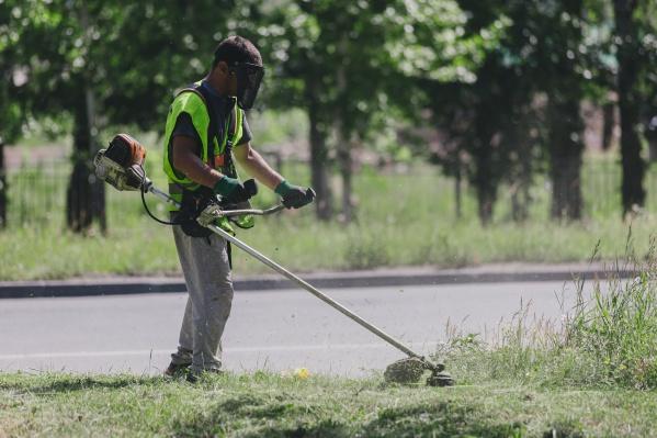 Регулярный покос помогает уменьшить количество сорняков и благоприятно сказывается на безопасности жителей города и их питомцев
